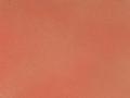 36_caramel_-_pomegranate_tomato_v2