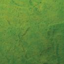 Pistachio Endura Faux Fusion Concrete Stain